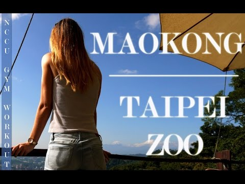 A weekend around NCCU - Maokong & Taipei Zoo