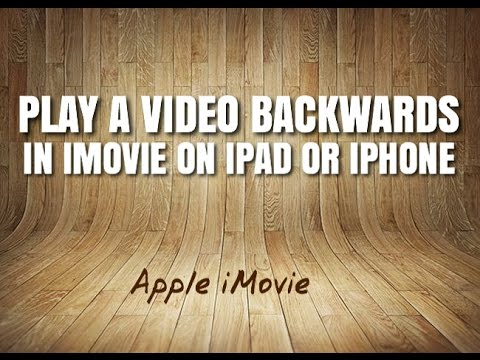 reverse video app free