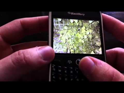 VideoReview Blackberry Curve 8900