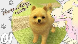 [Let's Play] Nintendogs + Cats (Toy Poodle) - EP01: New puppy (❍ᴥ❍ʋ)