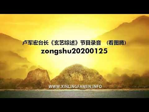 心灵法门-zongshu20200125---卢军宏台长《玄艺综述》节目录音-(看图腾)
