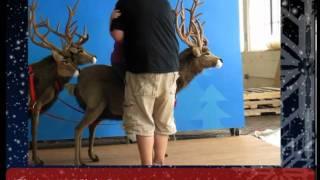 Here Comes Santa Claus, His Sleigh & Reindeer, Sled And Huskies - Life Size Christmas Display