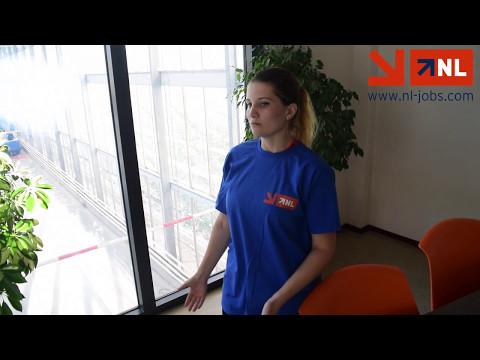Munca în Olanda