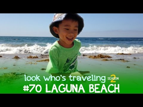 Things to do in Laguna Beach, California: Look Who's Traveling