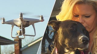 Who Shot Down a Drone Looking for a Lost Dog?