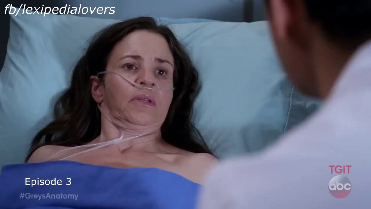 "Download Grey's Anatomy ""B-Team"" todos os episódios (legendado pt-br)"