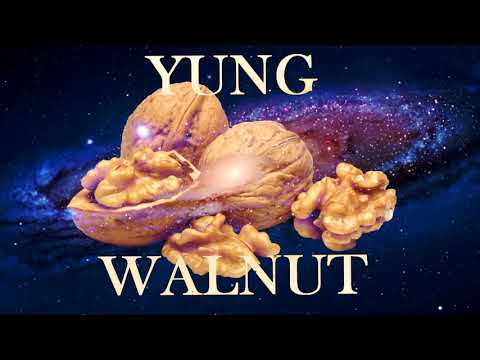 yung walnut - to infinity and bed bath and beyond