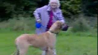 Babcia z psem na spacerze
