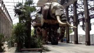 éléphant de Nantes - retour à l'atelier