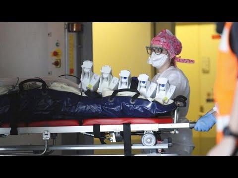 Dons de plasma et vers marins: les nouveaux espoirs dans la lutte contre le coronavirus