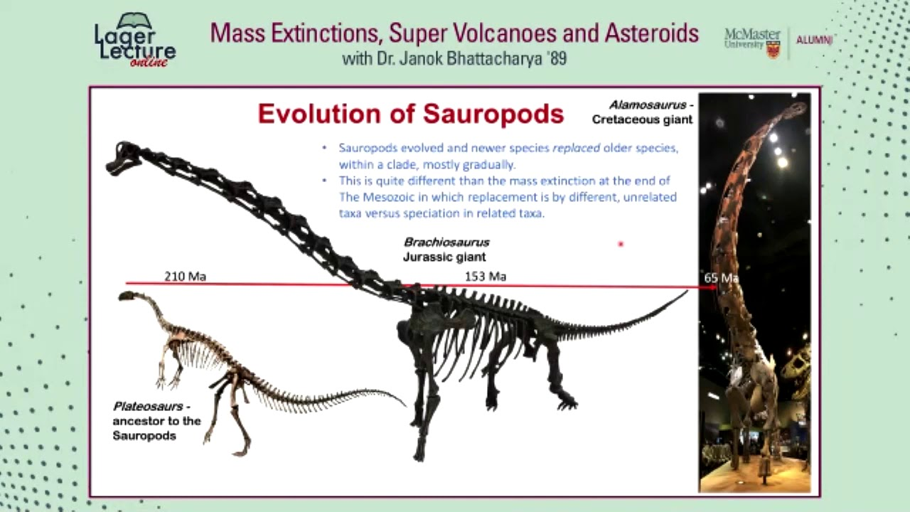Image for Lager Lecture Online: Mass Extinctions, Super Volcanoes and Asteroids with Dr. Janok Bhattacharya webinar