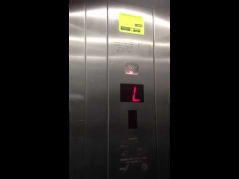 E.zaum Elevators @ Blue Bay Hotel In Natanya