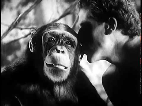 Tarzans Revenge 1938 JUNGLE ADVENTURE