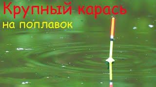 Крупный КАРАСЬ на ПОПЛАВОК рыбалка весной на удочку Ловля на малой реке
