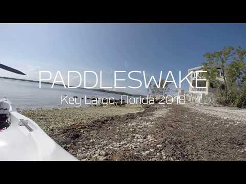 Kayaking Key Largo Florida - Shipwreck, Mangroves and Nurse Shark