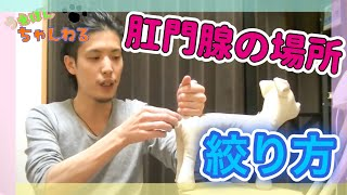 チャンネル登録よろしくお願いします!! →https://goo.gl/3yP8tt 「う...