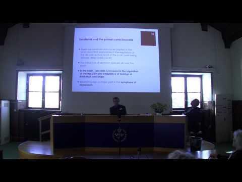 02. Johannes Lehtonen. Serotonin och psykoterapi