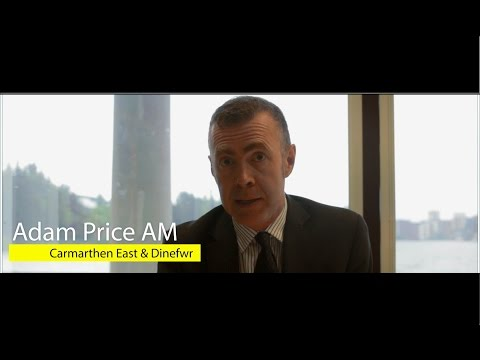 Plaid Cymru: Defending Our Economy