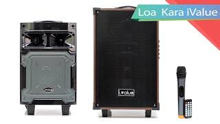 Loa Bluetooth Karaoke i.value 6.5inch và 10inch Gỗ