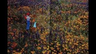 BULLSHIT Written by Real J Wallace, Produced by GODlee Barnes (Blu) & Animated by Antonina Clarke