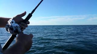 Wide Open Waters-Giant Walleye RS Nets USA