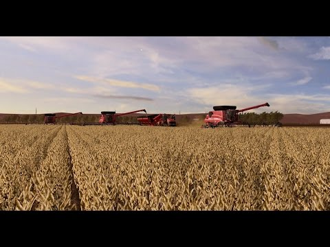 FS17- Lincoln Creek - Soybean Harvest