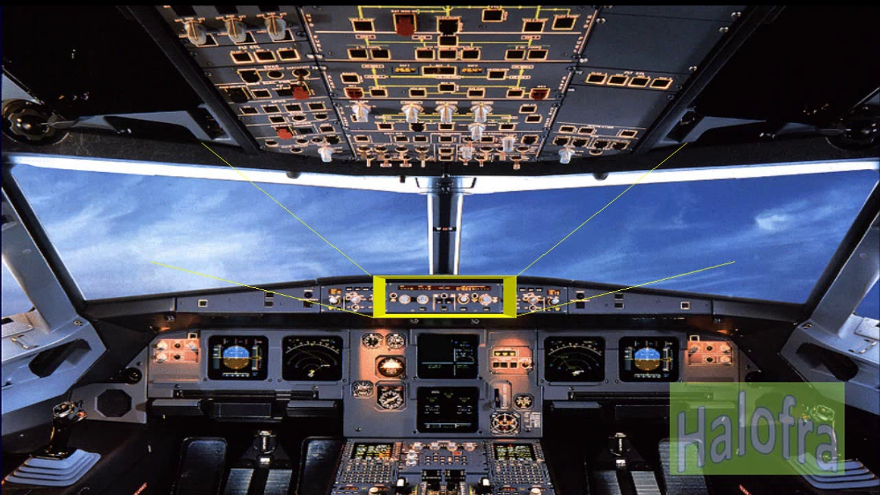 A320 Family (EFIS) Electronic Flight Instrument System Presentation