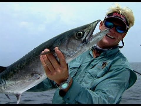 Kingfish and Shark Fishing the Pensacola Florida beaches