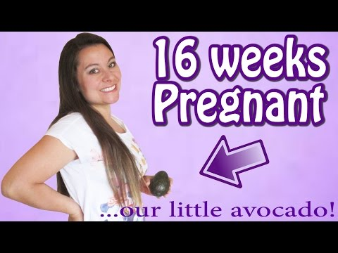 FEELING YOUR BABY MOVE FOR THE FIRST TIME! (16 WEEKS PREGNANT)