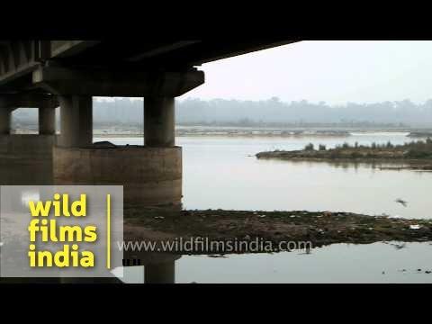 Bridge over Sutlej River - Ludhiana