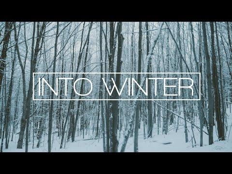 Into Winter 4K