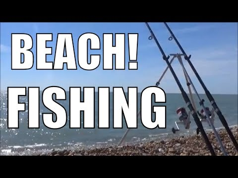 Beach Fishing - Eastbourne