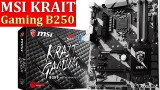 MSI B250 KRAIT Gaming для майнинга. Сколько видеокарт поддерживает. Обзор материнской платы