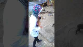 Арина кормит щенков хлебом