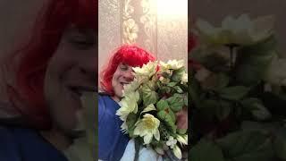 День Святого Валентина смешное видео юмор приколы
