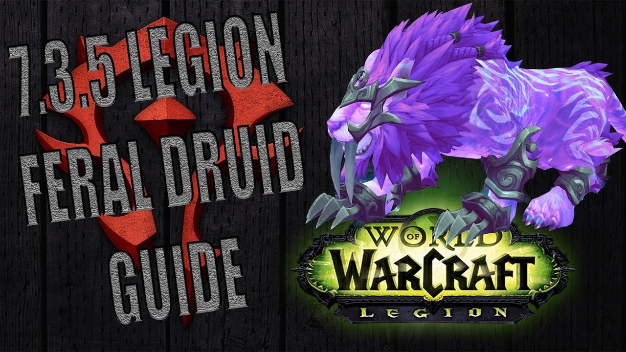 7 3 5 Legion Feral Druid Pvp Guide Youtube