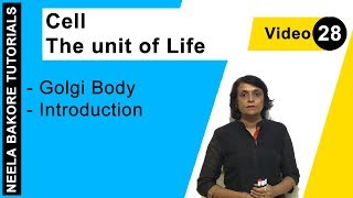 Cell - The Unit of Life - Golgi Body - Introduction
