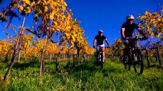 Tuscany Wine and Bike - Trailer | HD