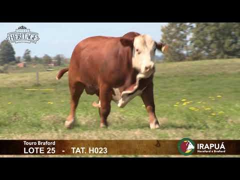 Leilão Heritage 2020 - Fazendas Irapuá