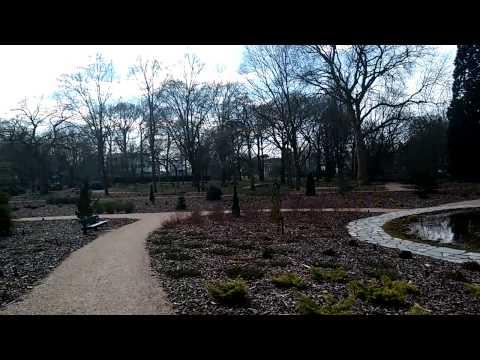 (Wageningen, Netherlands) Art Gallery and Arboreta