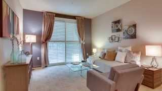 Candlestick Point: 401 Crescent Ct. #4113, San Francisco Condo for Sale - Climb Real Estate
