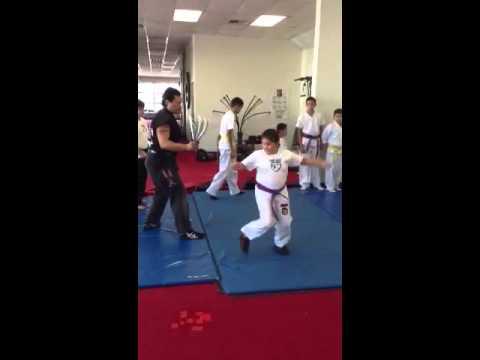 Shark karate class