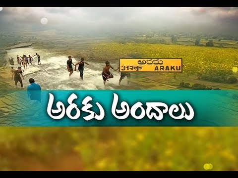 Awesome Scenarios | Drags the Attention of Visitors | in Winter Season | at Araku Vally