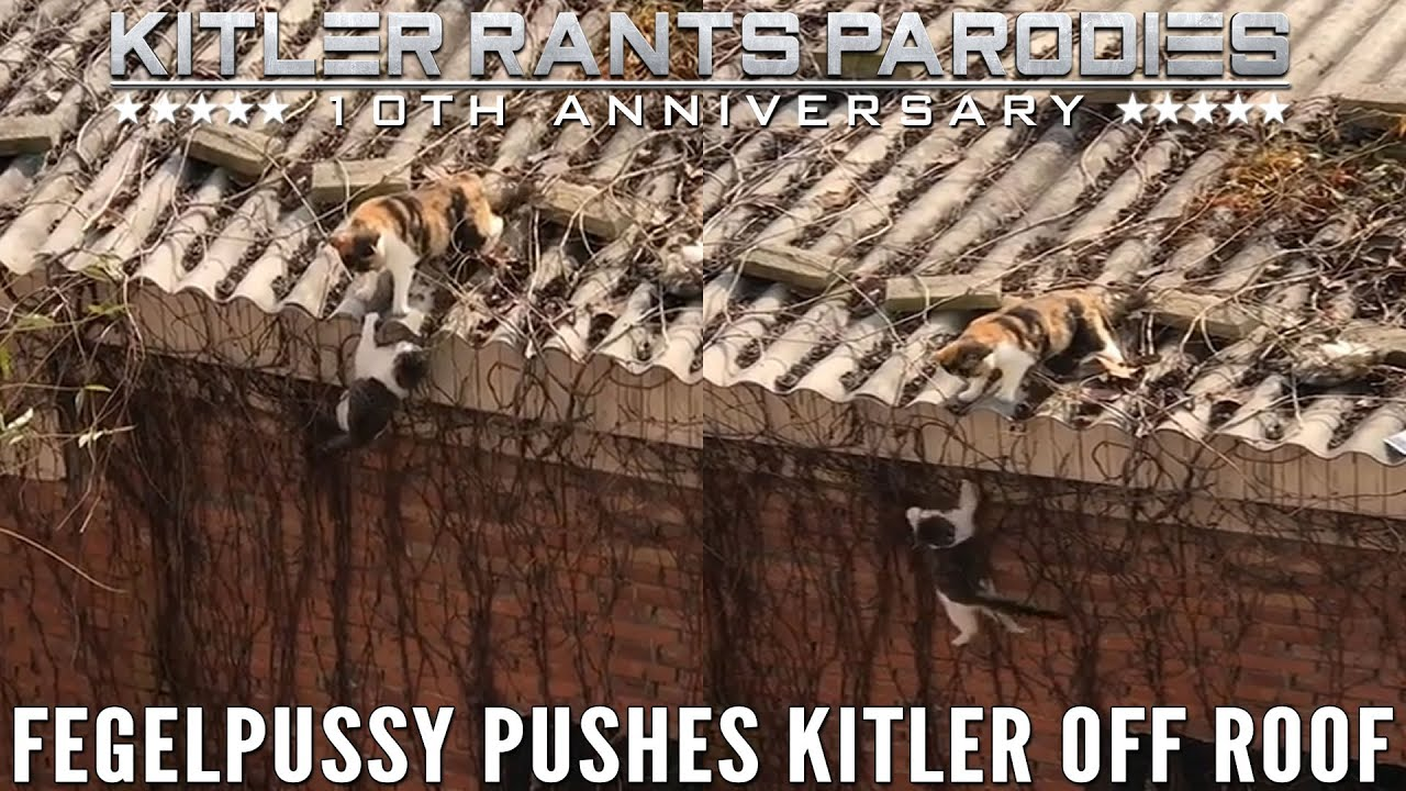 Fegelpussy pushes Kitler off roof