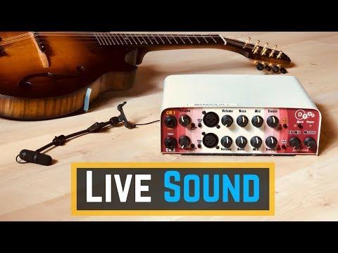 Mandolin Microphones -  Live Sound Setup Tutorial