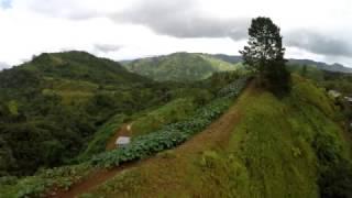 Orocovis Puerto Rico Barrios Bauta Abajo y Bermejales