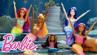 Barbie New Year's Video Countdown | Barbie