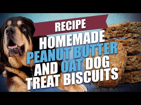 Homemade Peanut Butter And Oat Dog Treat Biscuits Recipe