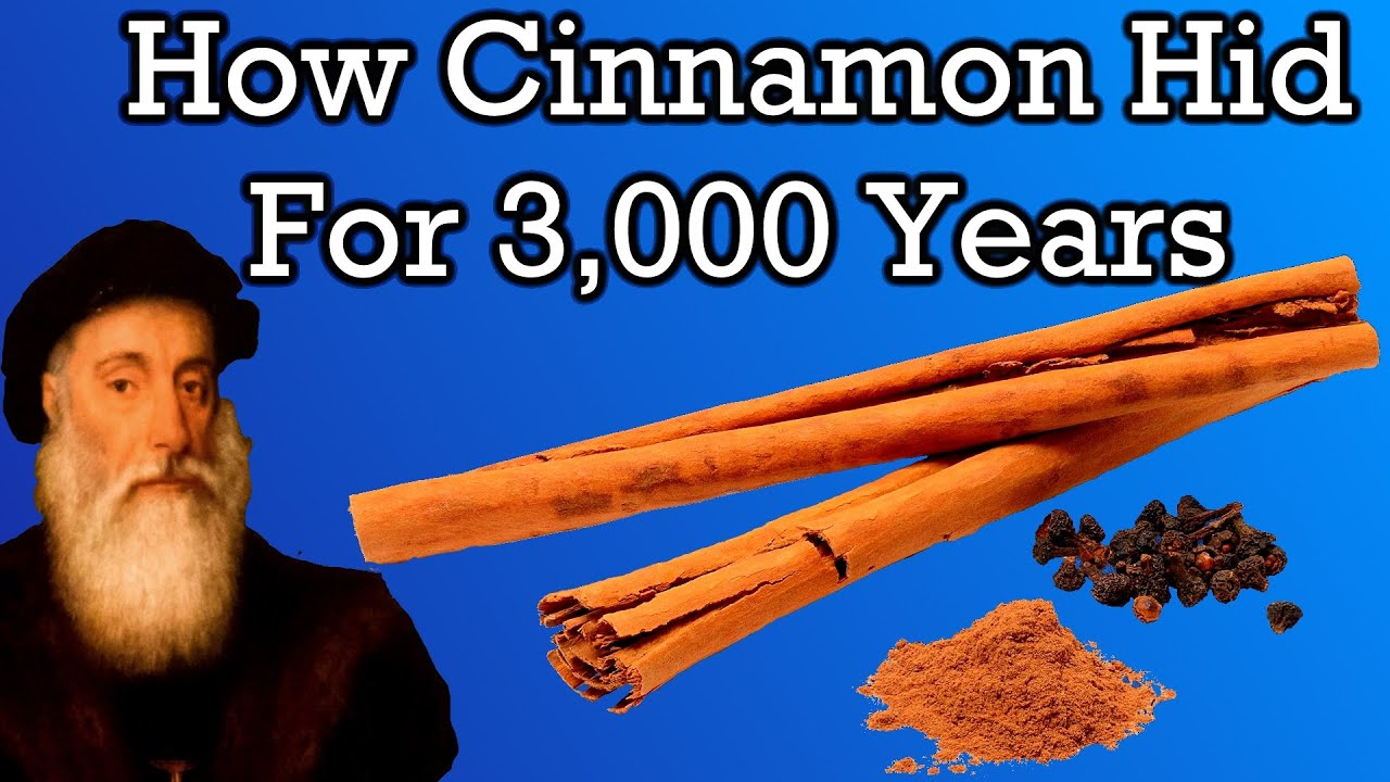 The Mysterious History of Cinnamon
