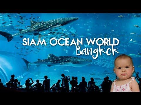 Ocean World Bangkok Aquarium - Siam Paragon - Thailand VLOG